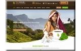 Tea House Inc Limited Thumbnail